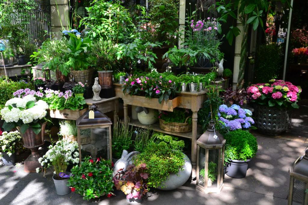 fleuriste-julian-15-boulevard-de-la-tour-maubourg-75007-paris-mof-fleurs-plantes-bouquets-petitscommerces-fr-petit-commerce-petits-commerces-5