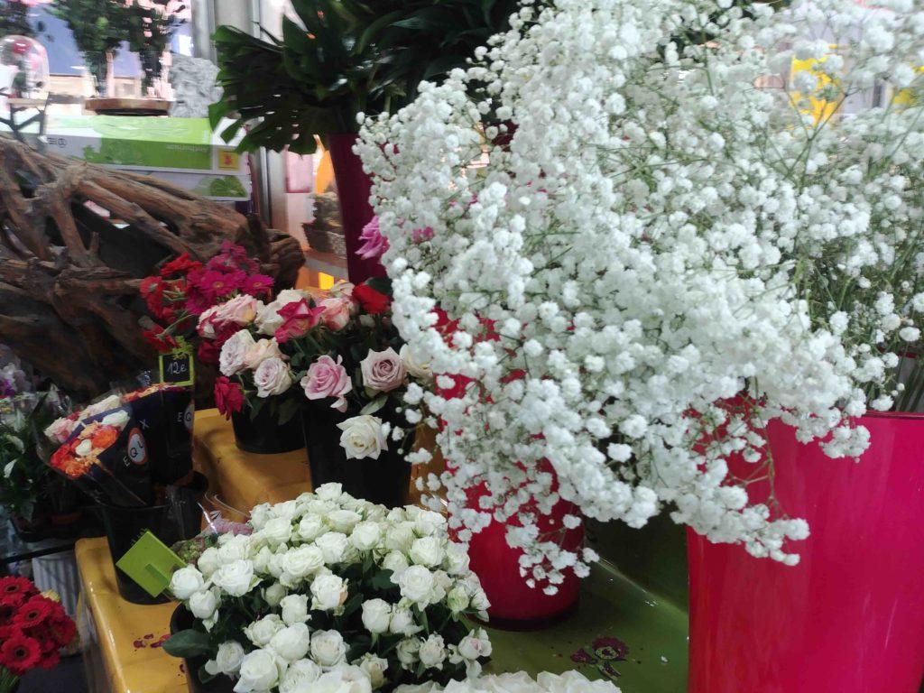 Fleurs de l'Olympe fleuriste Goussainville centre commercial Carrefour Gonesse Arnouville fleurs fraiches de qualité fleurs roses éternelles plantes deco