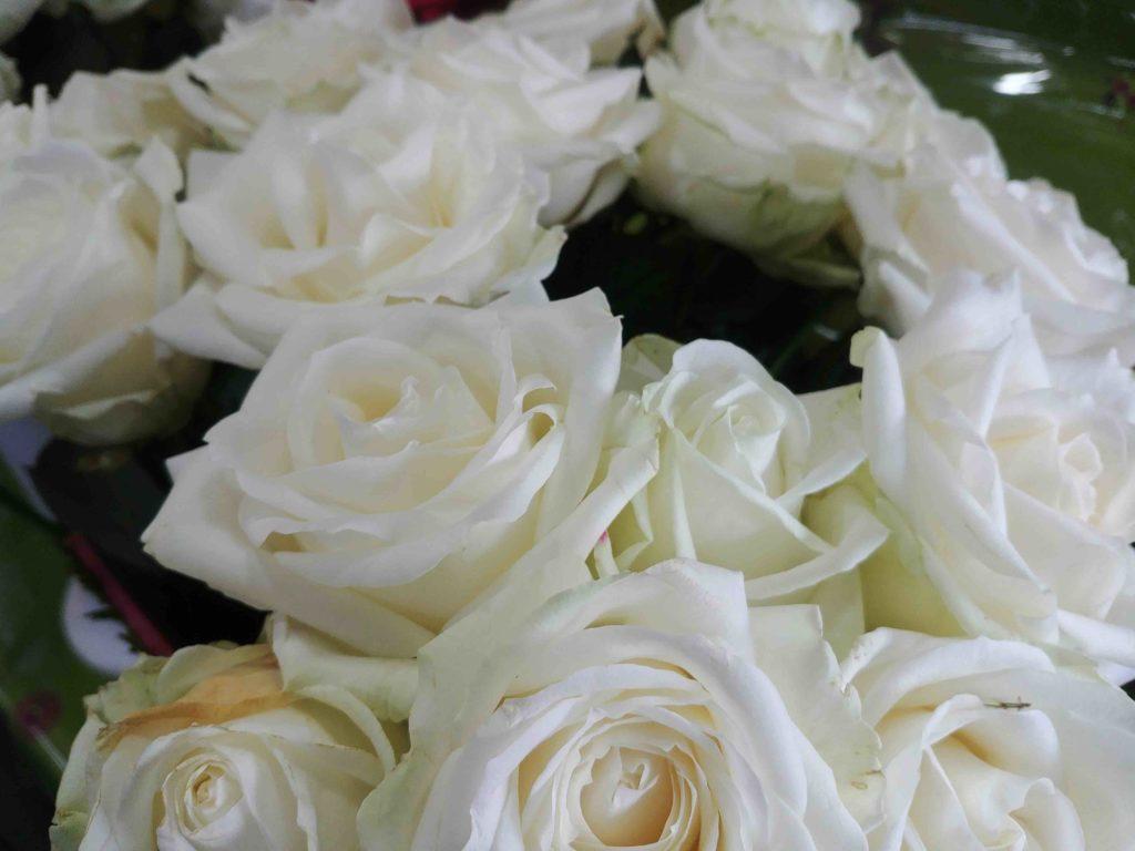 Fleurs de l'Olympe fleuriste Goussainville centre commercial Carrefour Gonesse Arnouville fleurs fraiches de qualité fleurs roses éternelles plantes rose blanche