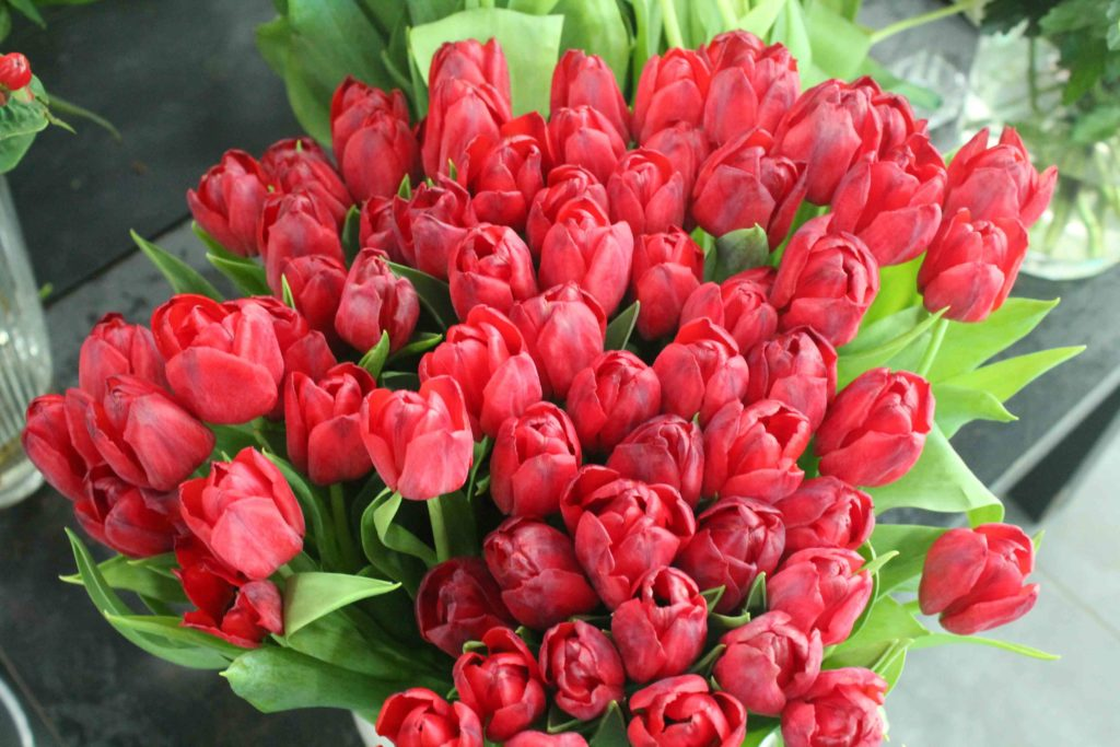 Les Jardins d-Andalousie fleuriste fleurs tulipes rouges paris 18 marcadet poissonniers petit commerce www.petitscommerces.fr