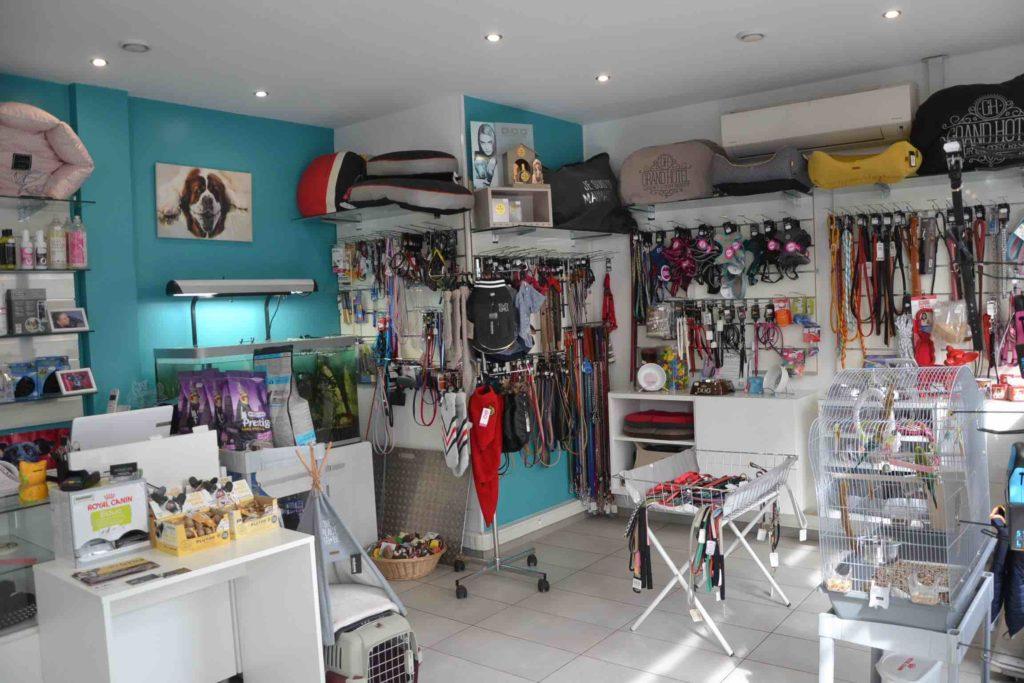 Au Chien Chic Salon de toilettage Argenteuil Toiletteur chiens chats rue de la poste prolongee boutique