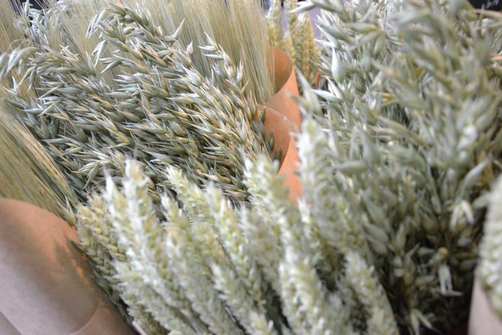 Florishop Fleuriste Argenteuil Jean-Luc artisan-fleuriste 84 avenue Gabriel Péri Argenteuil devanture fleurs sechees