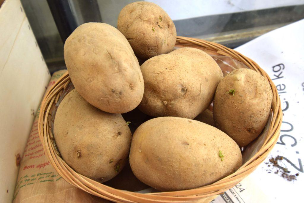 Les-Serres-de-Mitry-Horticulteur-Maraicher-Mitry-Mory-panier-de-pommes-de-terre-recoltees-par-Gael